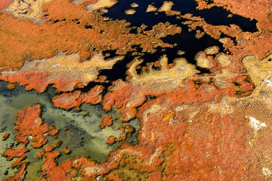 california_aerial (11)