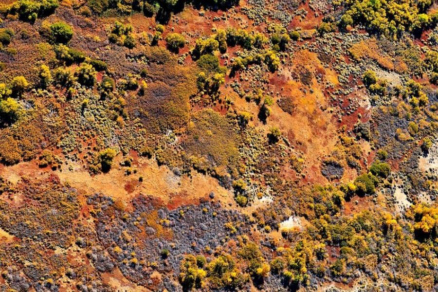 california_aerial (13)