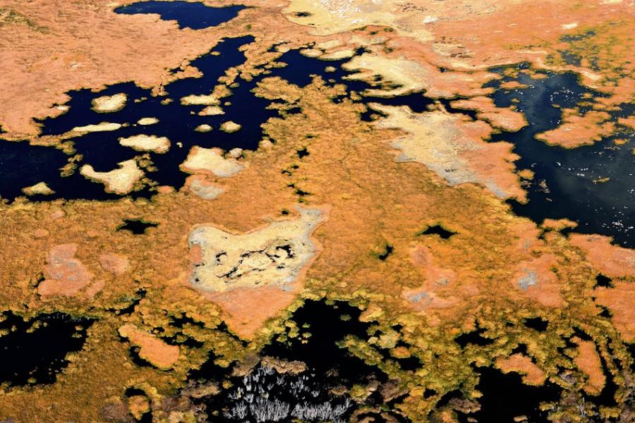 california_aerial (21)