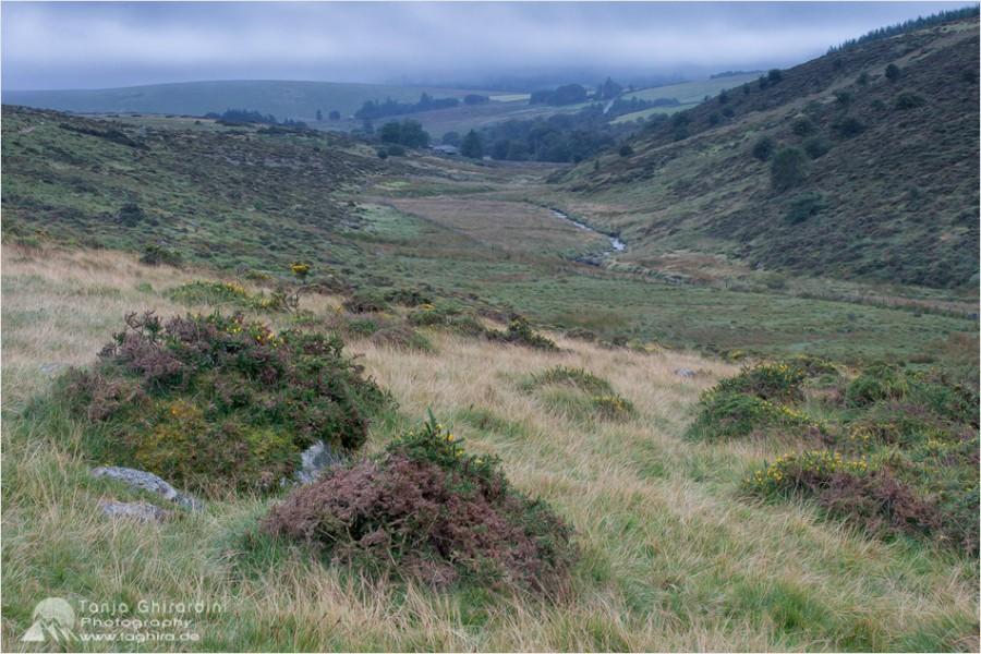 Dartmoor-2-900x600 in Dartmoor - mystisch und unwiderstehlich schön...