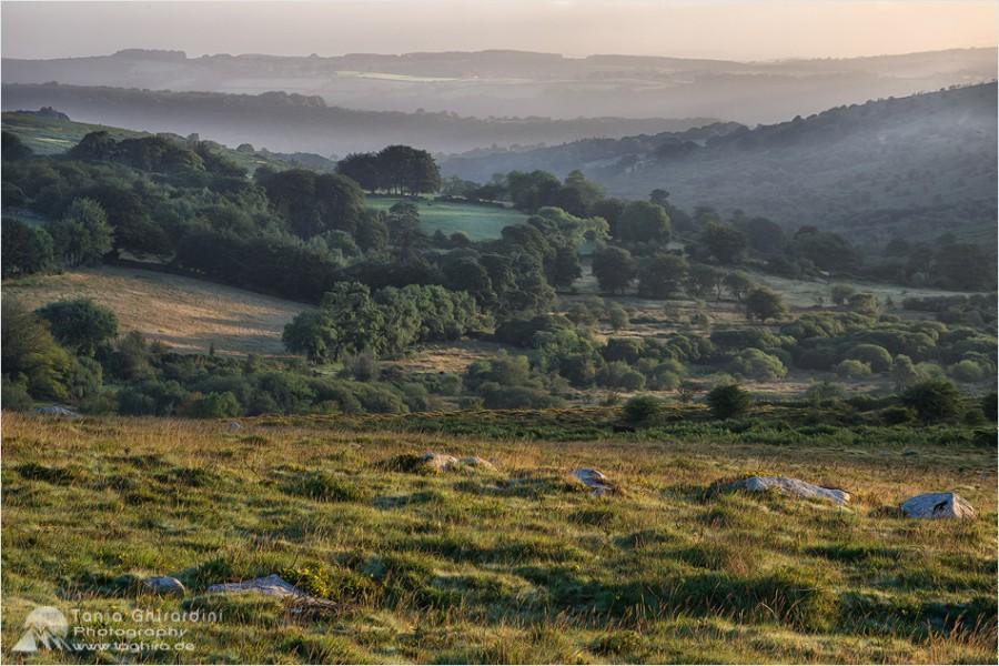 Dartmoor-3-900x600 in Dartmoor - mystisch und unwiderstehlich schön...